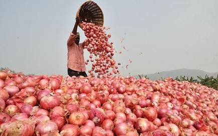 Onion, High Price