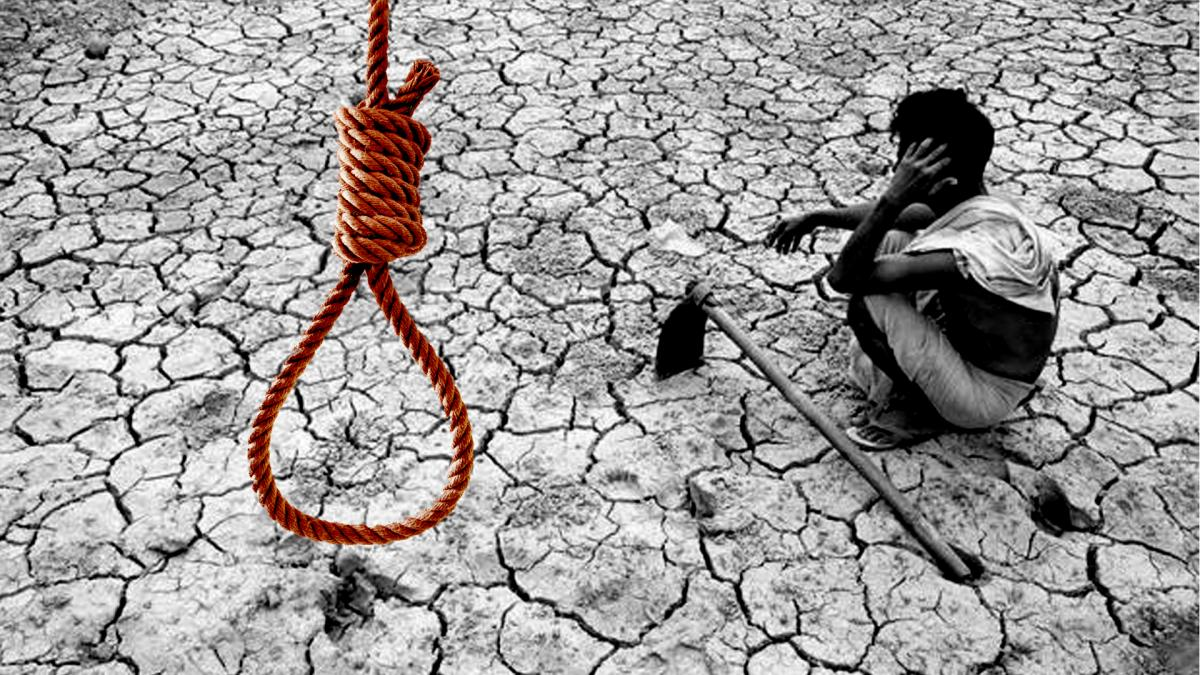 farmers suicide causes
