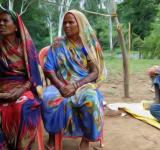 Adivasi forest worker