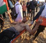 palestine protestor