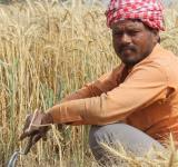 Farmers, Farm loan, Exchequer