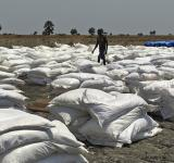 Famines in the 21st century? It's not for lack of food