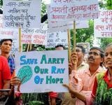 Save Aarey