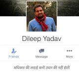 Dilip YADAV critical
